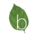 Basilico Ltd